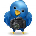 Photography on Twitter by Marc Benton via Flickr CC-By-NC-SA